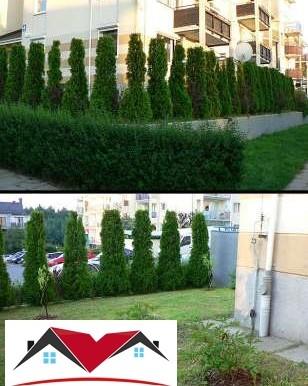 solnechnaya-kvartira-72-m2-s-terrasoj-gdynya 8