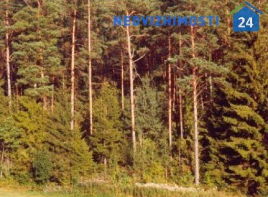 zemelnyj-uchastok-85-780-m2-v-suvalkah 9