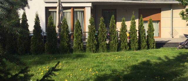 9319252_14_1280x1024_piekny-apartament-z-duzym-tarasem-i-ogrodem-bezpos-